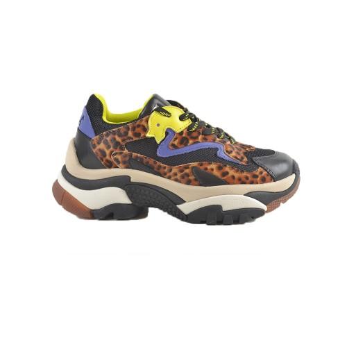 Sneakers ASH ADDICT Color Maculado